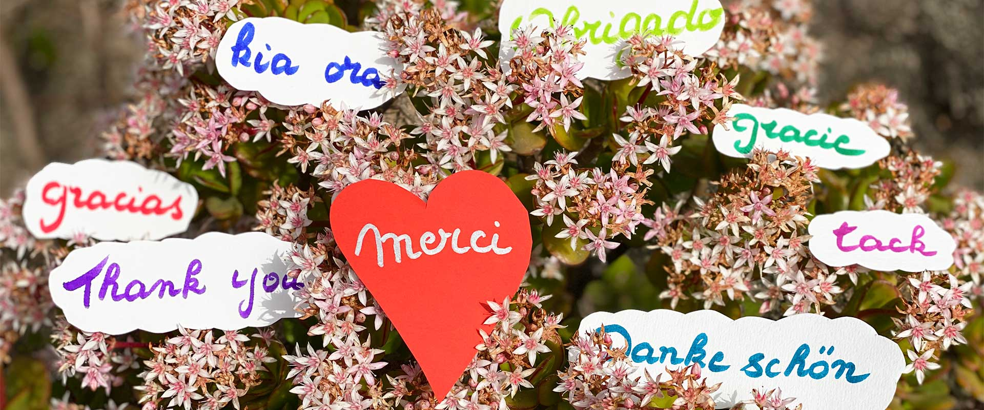 Mosaique Merci - le mot magique parfois difficile à dire